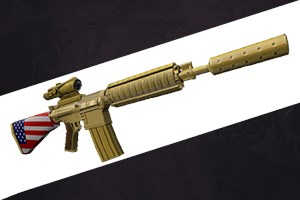 United States Weapon Skin